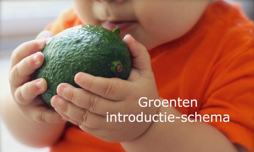 Groenten introductie-schema